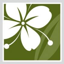 LogoSquareAveBloom